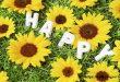 Bí quyết của hạnh phúc!