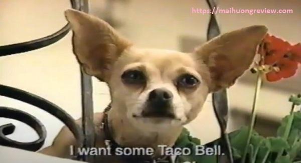 Chiến thuật của Taco Bell thất bại về doanh số